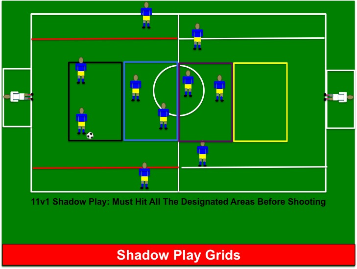 how to coach shadow play